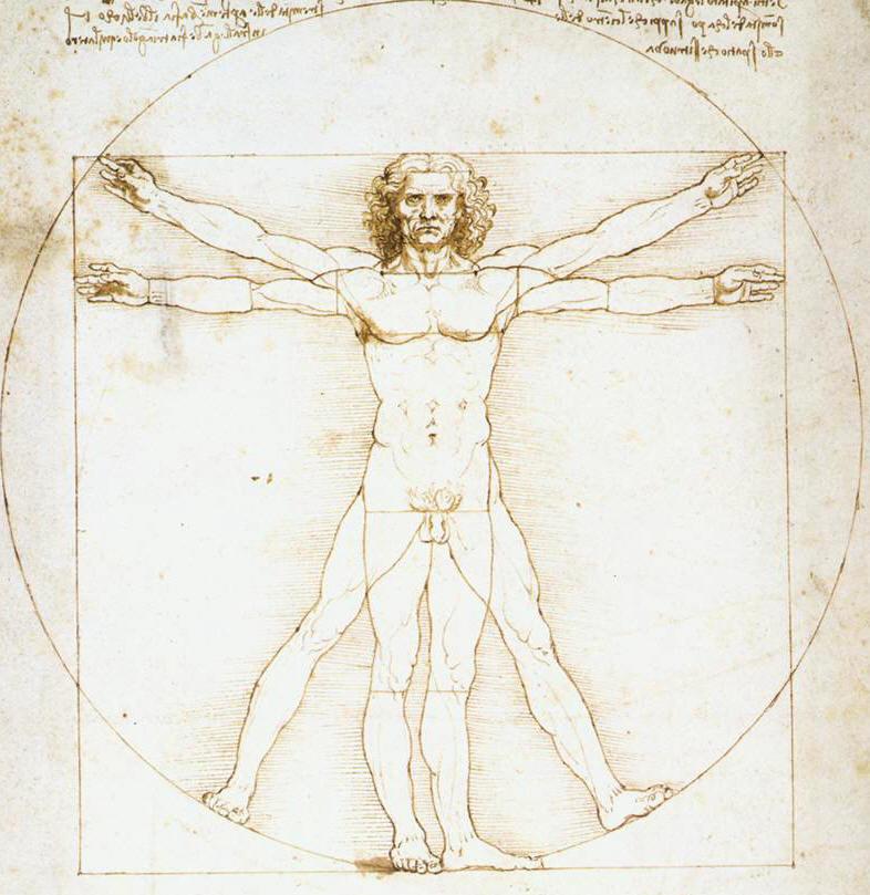 El-hombre-vitruvio